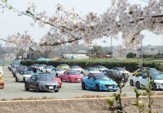 桜満開のイベント日和となりました